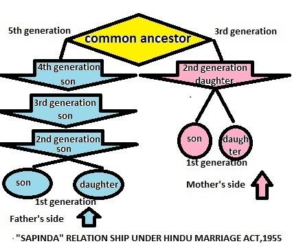 Sapinda relation- prolawctor